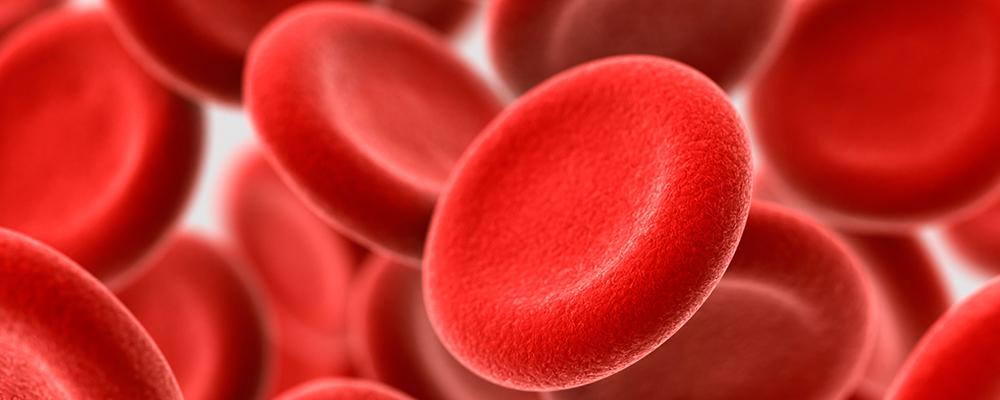 أنواع أمراض الدم