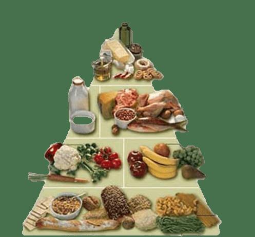 ما هی اهمیة النظام الغذائی ؟