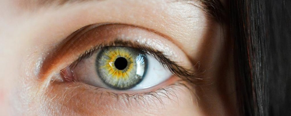 آشنایی با برخی از بیماری های چشم انسان