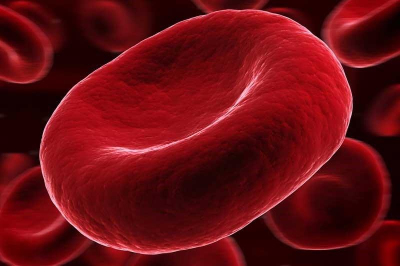 بیماریهای خونی