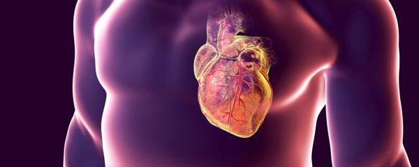چه عواملی در بروز سرطان قلب موثر است